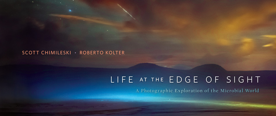 Life at the Edge of Sight: A Photographic Exploration of the Microbial World, by Scott Chimileski and Roberto Kolter