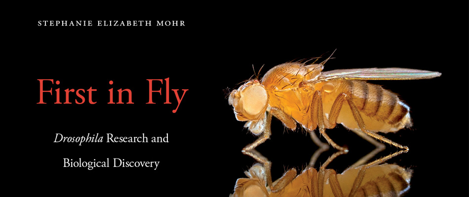 First in Fly: <i>Drosophila</i> Research and Biological Discovery, by Stephanie Elizabeth Mohr