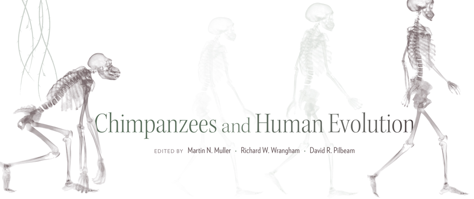 Chimpanzees and Human Evolution, edited by Martin N. Muller, Richard W. Wrangham, and David R. Pilbeam