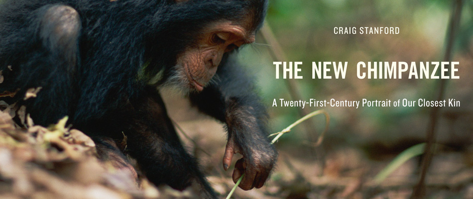 The New Chimpanzee:A Twenty-First-Century Portrait of Our Closest Kin, by Craig Stanford
