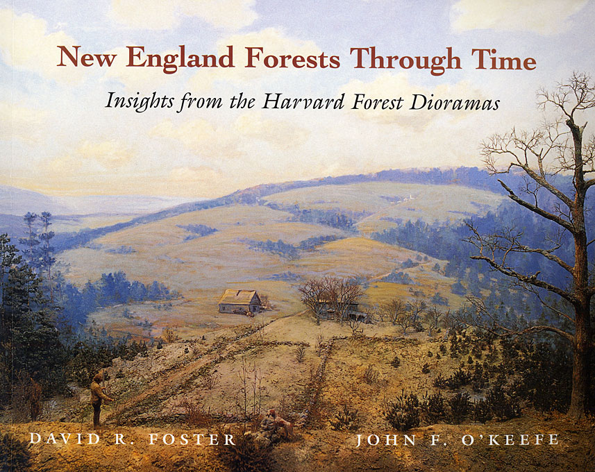 Cover: New England Forests Through Time: Insights from the Harvard Forest Dioramas, from Harvard University Press