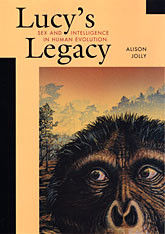 Cover: Lucy's Legacy: Sex and Intelligence in Human Evolution