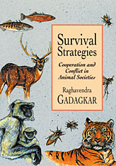 Cover: Survival Strategies: Cooperation and Conflict in Animal Societies