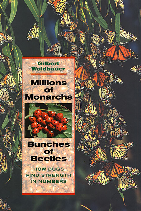 Cover: Millions of Monarchs, Bunches of Beetles: How Bugs Find Strength in Numbers, from Harvard University Press