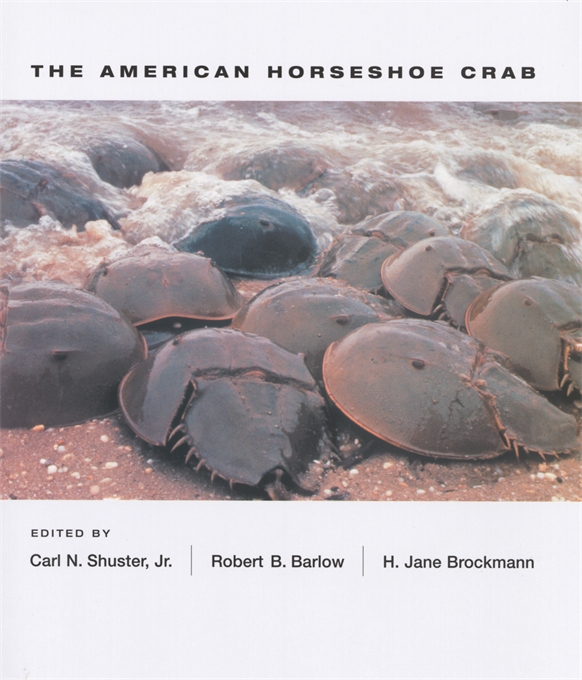 Cover: The American Horseshoe Crab, from Harvard University Press
