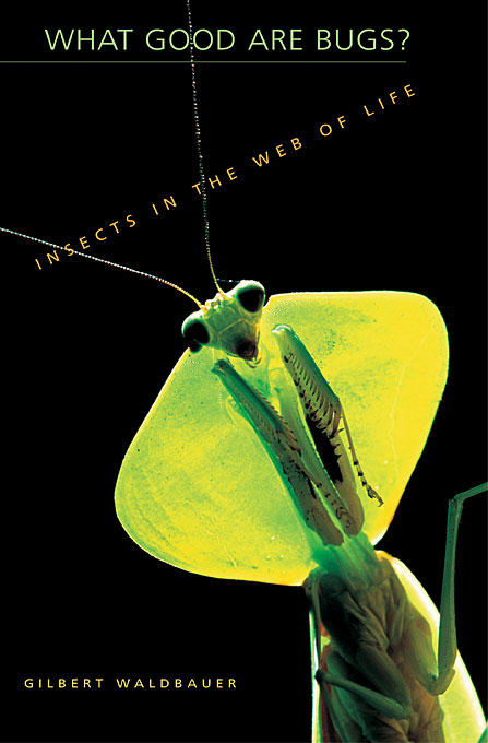 Cover: What Good Are Bugs?: Insects in the Web of Life, from Harvard University Press