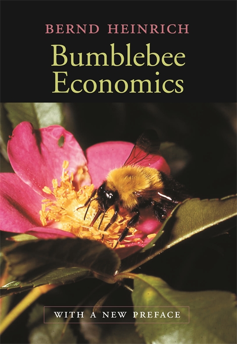 Cover: Bumblebee Economics: With a New Preface, from Harvard University Press