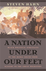 Cover: A Nation under Our Feet: Black Political Struggles in the Rural South from Slavery to the Great Migration