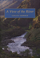 Cover: A View of the River in PAPERBACK