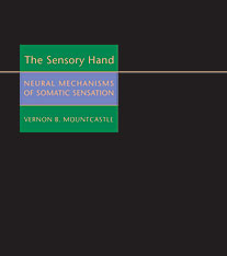 Cover: The Sensory Hand in HARDCOVER