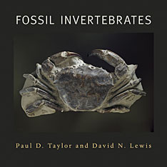 Cover: Fossil Invertebrates
