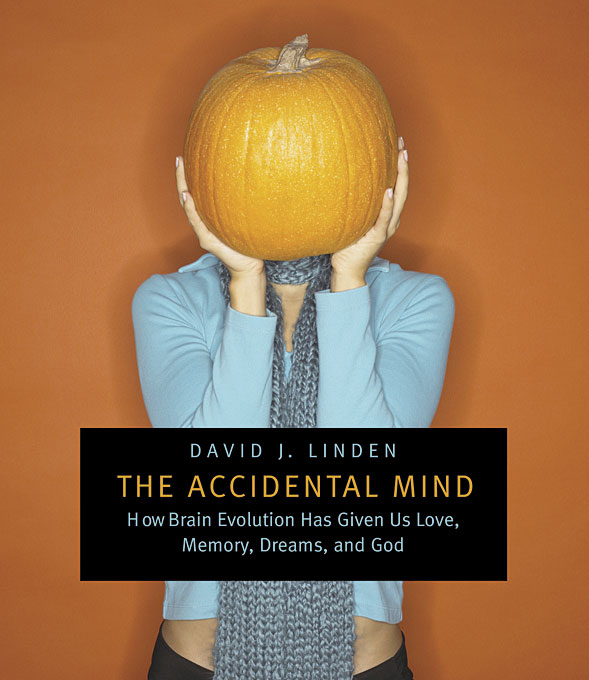 Cover: The Accidental Mind: How Brain Evolution Has Given Us Love, Memory, Dreams, and God, from Harvard University Press