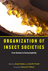 Cover: Organization of Insect Societies in HARDCOVER