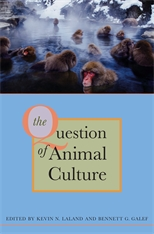 Cover: The Question of Animal Culture