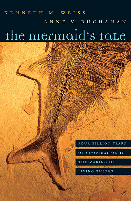 Cover: The Mermaid's Tale: Four Billion Years of Cooperation in the Making of Living Things, from Harvard University Press