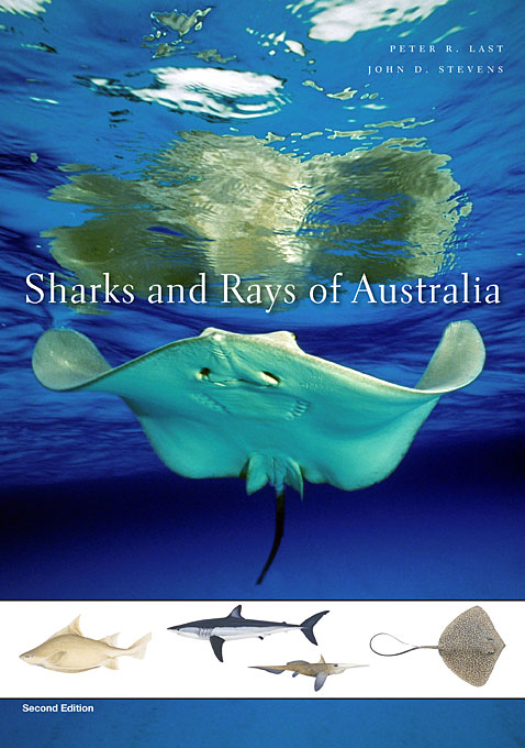 Cover: Sharks and Rays of Australia: Second Edition, from Harvard University Press