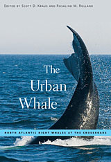 Cover: The Urban Whale in PAPERBACK