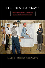 Cover: Birthing a Slave: Motherhood and Medicine in the Antebellum South