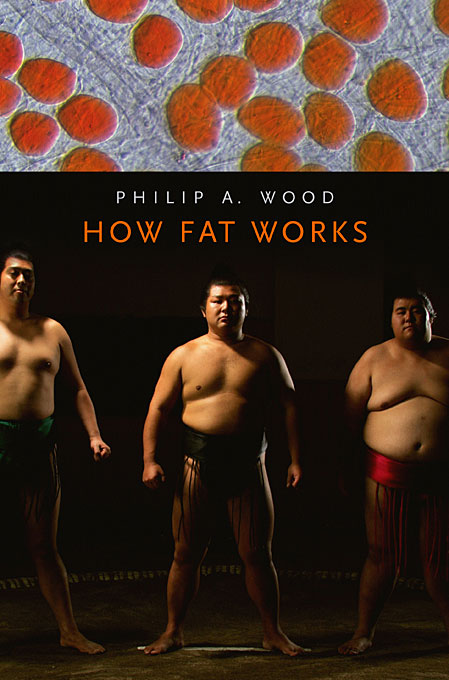 Cover: How Fat Works, from Harvard University Press
