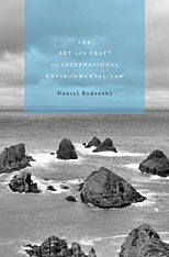Cover: The Art and Craft of International Environmental Law in HARDCOVER