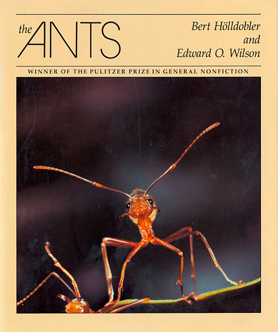 Cover: The Ants, from Harvard University Press