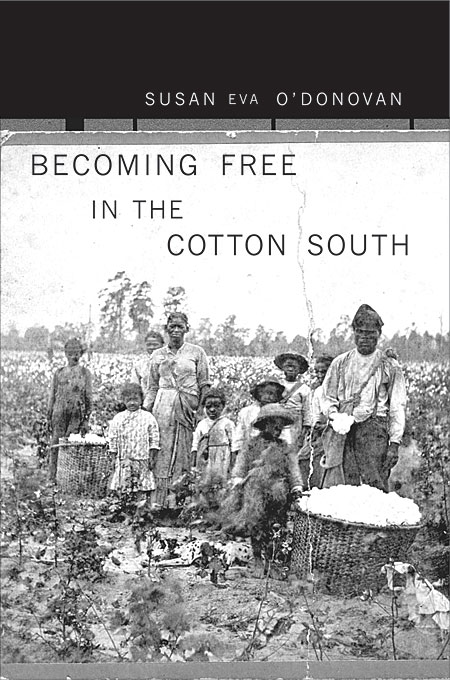 Cover: Becoming Free in the Cotton South, from Harvard University Press