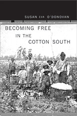 Cover: Becoming Free in the Cotton South