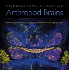 Cover: Arthropod Brains: Evolution, Functional Elegance, and Historical Significance, by Nicholas James Strausfeld, from Harvard University Press
