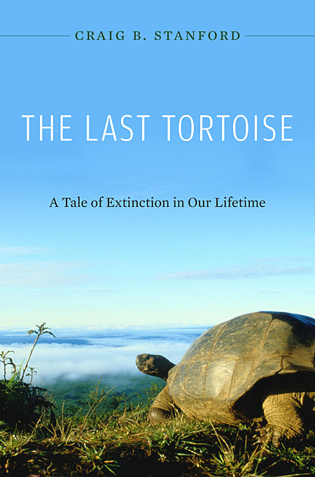 Cover: The Last Tortoise: A Tale of Extinction in Our Lifetime, from Harvard University Press