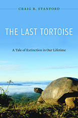 Cover: The Last Tortoise in HARDCOVER