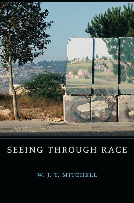 Cover: Seeing Through Race, from Harvard University Press