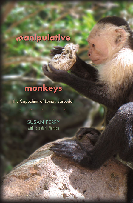 Cover: Manipulative Monkeys: The Capuchins of Lomas Barbudal, from Harvard University Press