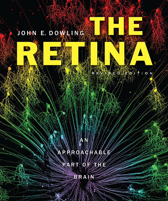 Cover: The Retina: An Approachable Part of the Brain, Revised Edition, from Harvard University Press