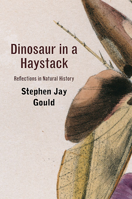 Cover: Dinosaur in a Haystack: Reflections in Natural History, from Harvard University Press