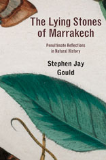 Cover: The Lying Stones of Marrakech: Penultimate Reflections in Natural History