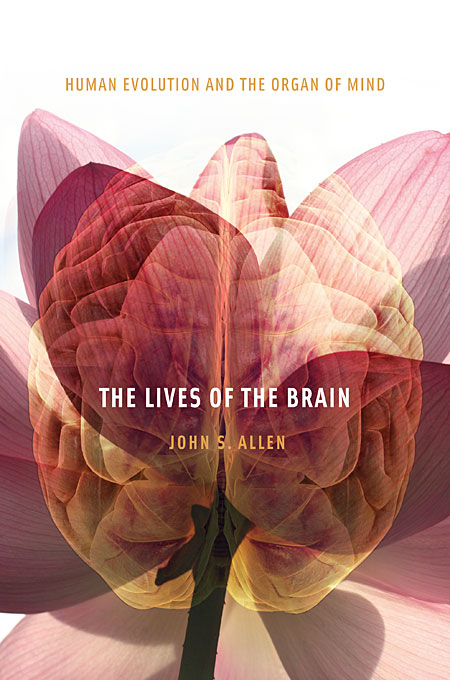 Cover: The Lives of the Brain: Human Evolution and the Organ of Mind, from Harvard University Press