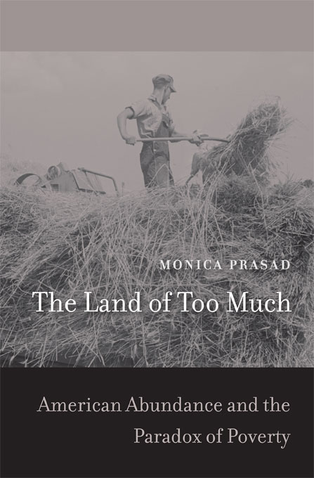 Cover: The Land of Too Much: American Abundance and the Paradox of Poverty, from Harvard University Press