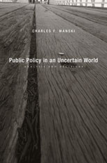 Cover: Public Policy in an Uncertain World in HARDCOVER