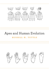 Cover: Apes and Human Evolution, by Russell H. Tuttle, from Harvard University Press