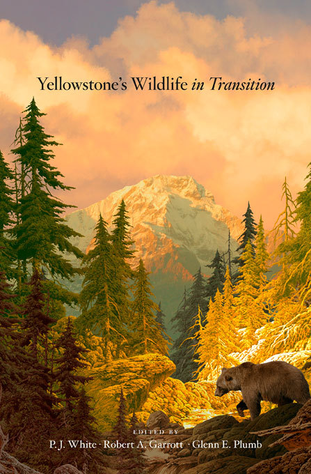 Cover: Yellowstone's Wildlife in Transition, from Harvard University Press