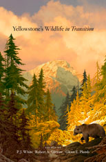 Cover: Yellowstone's Wildlife in Transition in HARDCOVER