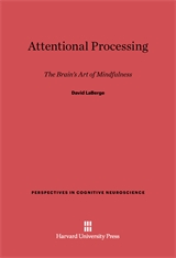 Cover: Attentional Processing in E-DITION