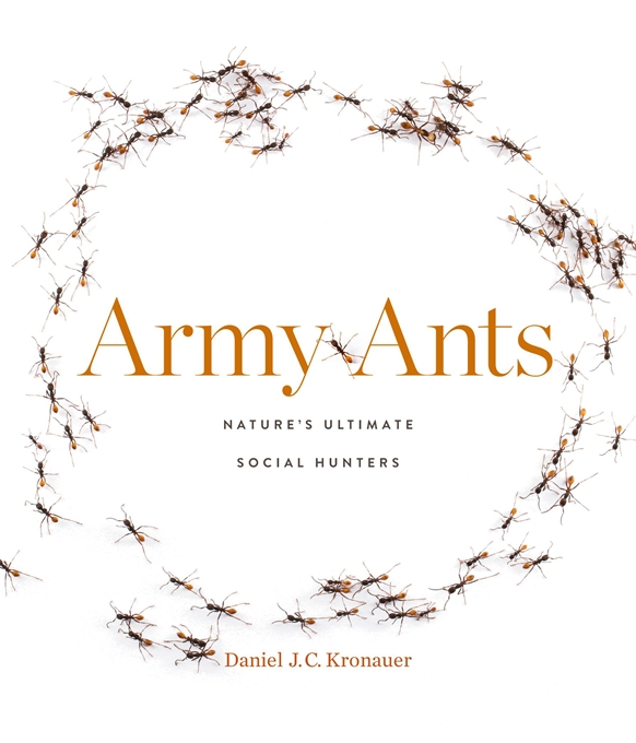 Cover: Army Ants: Nature's Ultimate Social Hunters, by Daniel J. C. Kronauer, from Harvard University Press