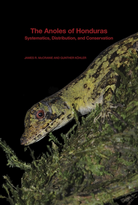 Cover: The Anoles of Honduras: Systematics, Distribution, and Conservation, from Harvard University Press
