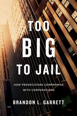 Cover: Too Big to Jail in PAPERBACK