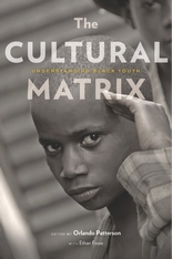 Cover: The Cultural Matrix: Understanding Black Youth
