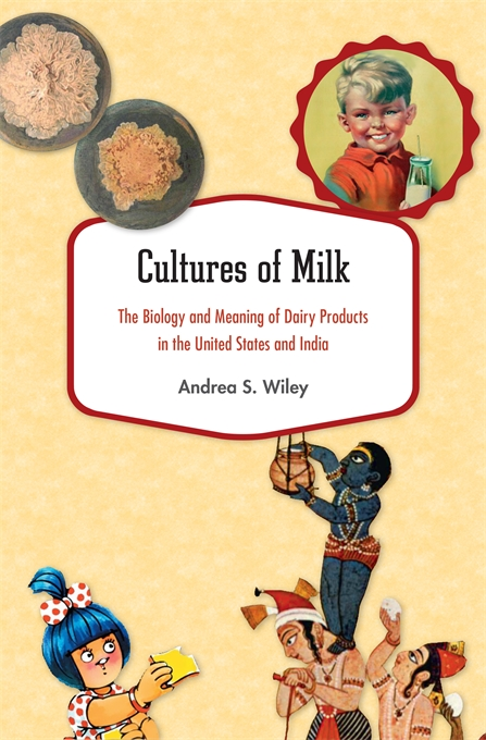 Cover: Cultures of Milk: The Biology and Meaning of Dairy Products in the United States and India, from Harvard University Press