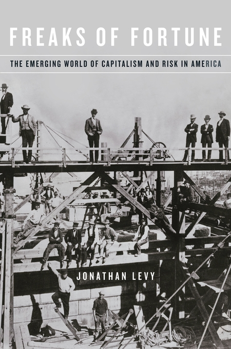 Cover: Freaks of Fortune: The Emerging World of Capitalism and Risk in America, from Harvard University Press