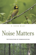 Cover: Noise Matters: The Evolution of Communication