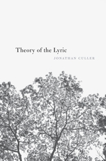 Cover: Theory of the Lyric in HARDCOVER